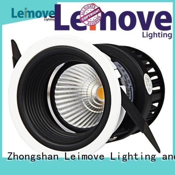 leimove Custom outdoor lighting led spot light Leimove years