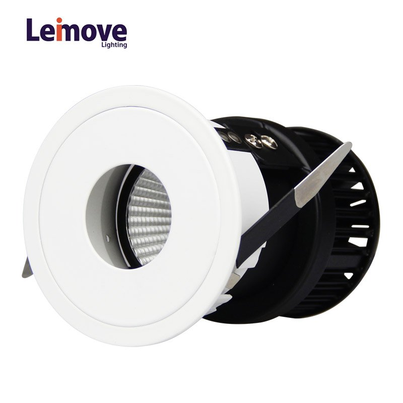 Leimove Hot Sale Adjustable LED COB 5W Wall Washer Light LM29834-FX LED Spot Light image1