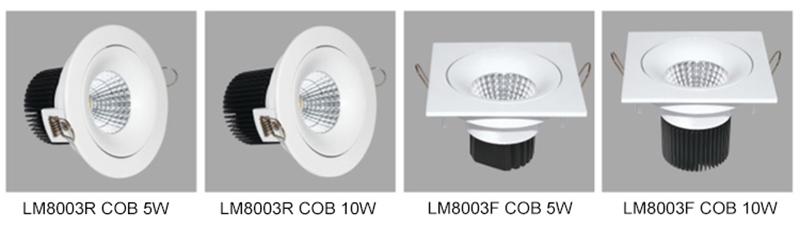 Leimove-2017 New Cob Ac100-240v Round Led Downlight Lm8003 - Leimove Lighting-5