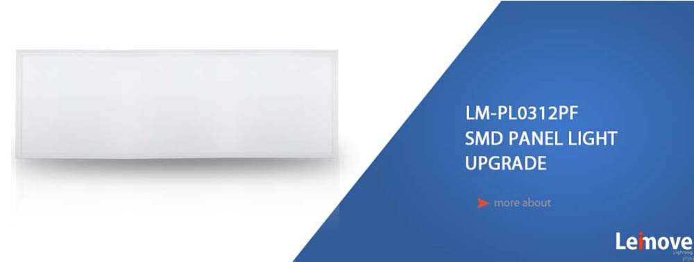 Leimove-Professional Led Panel Light Surface Mounted Led Panel Light Manufacture-1