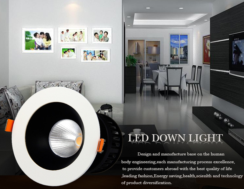 Leimove-Factory Supply Led Cob Downlight From Leimove Lighting