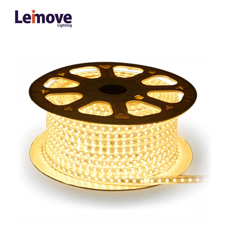 Leimove Outdoor Use IP65 Waterproof Round Shape 360 Degree Low Power Consumption Led Strip Light LED Flexible strip light image1