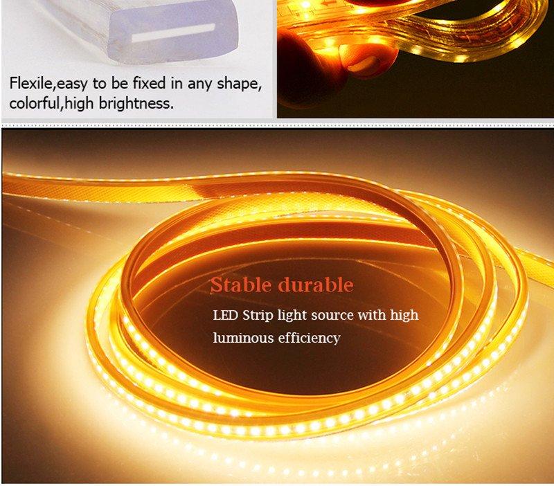 Leimove-High-quality Led Ribbon Lights From Leimove Lighting-5