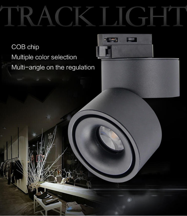 Leimove-Lens Adjustable And Cct Switchable Ce Etl Approved Cob Led Track Light