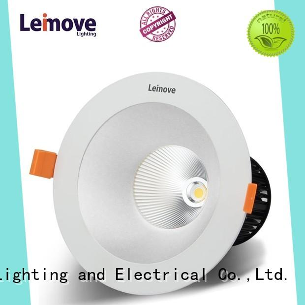 anti-dazzling led down lights for homes ceiling decoration for customization Leimove