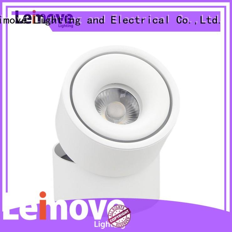 unique track dimmable lens Leimove Brand led track light supplier