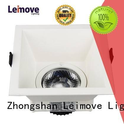outdoor rohs downlight Leimove Brand spot led manufacture