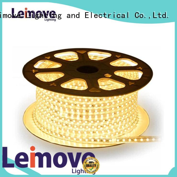 Outdoor Use IP65 Waterproof Low Power Consumption Led Strip Light