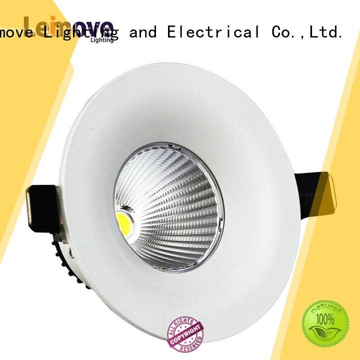 Leimove Led white Ceiling Decoration Indoor Lighting  LM7004