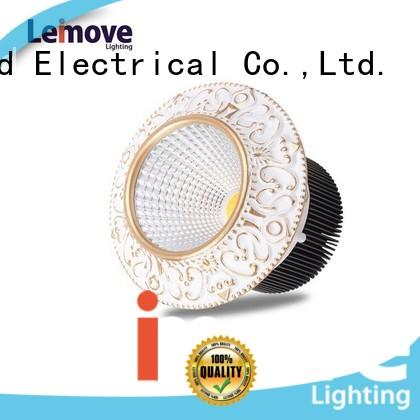 Leimove silver-gold double led spotlights ceiling for sale