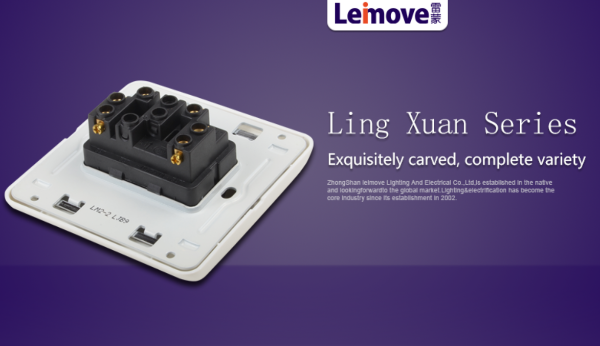 Leimove-Light Switches And Sockets | Double Switch On Two Stilts - Leimove Lighting-4