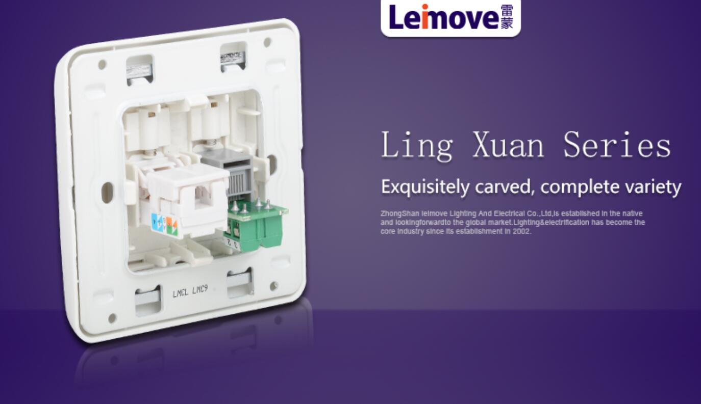 Leimove-Computer Phone Socket Lmcla | China Electric Socket Company-4