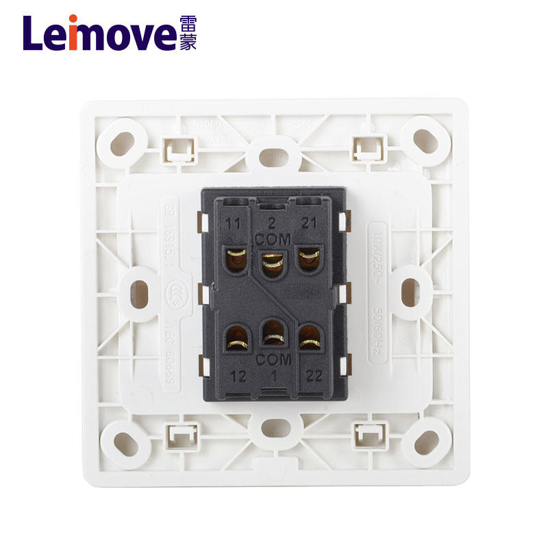 Two large rocker dual switch