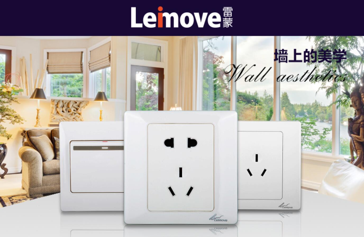 Leimove-High-quality Two Large Rocker Dual Switch | Ling Tong Series