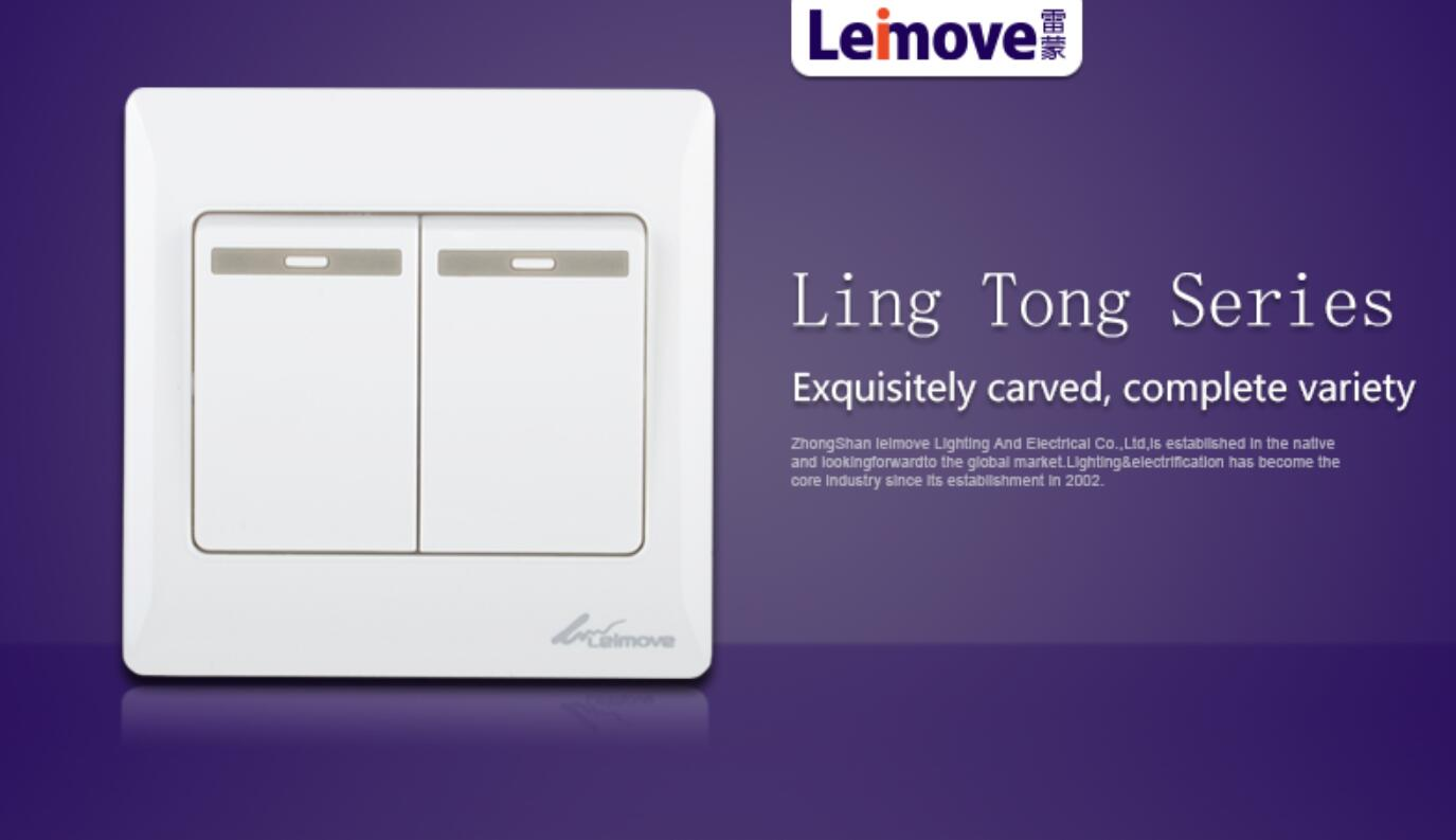 Leimove-High-quality Two Large Rocker Dual Switch | Ling Tong Series-2