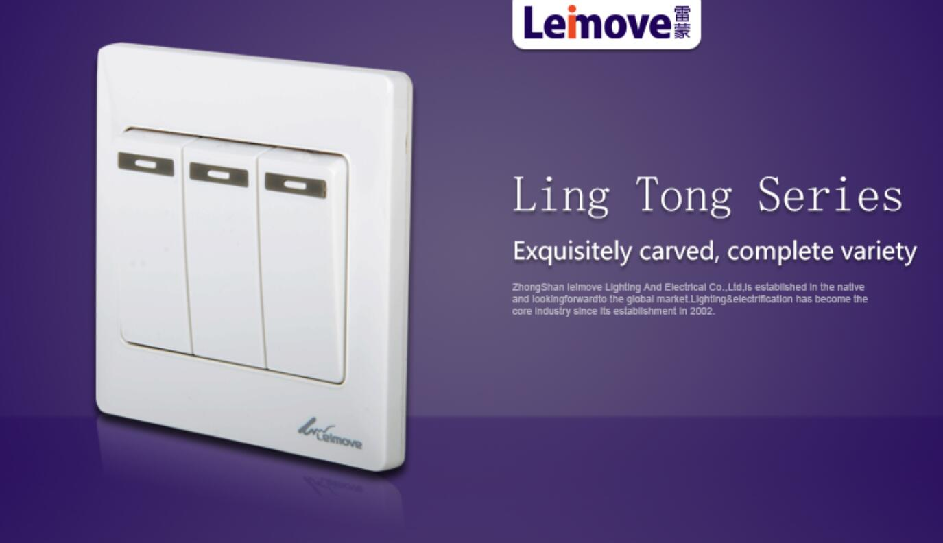 Leimove-Electrical Switch Box Best Electric Switch For Home From Leimove-3
