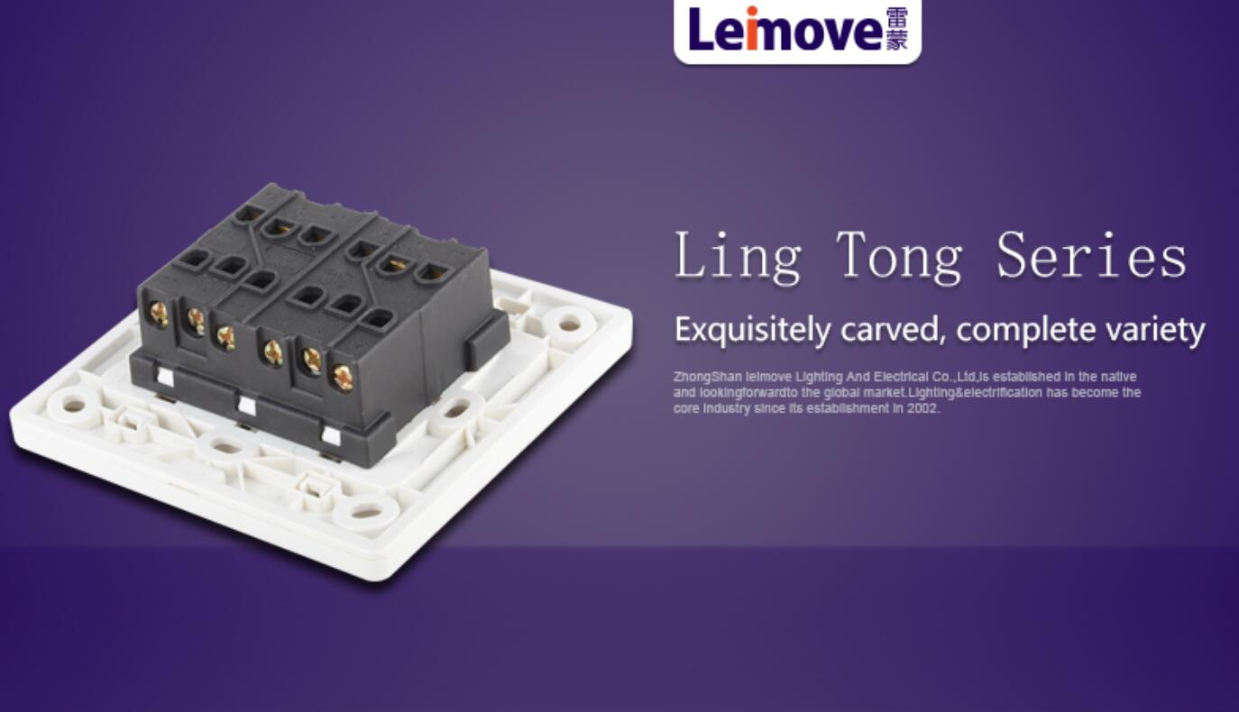 Leimove-Professional Four Big Rocker Dual Switch Supplier-5